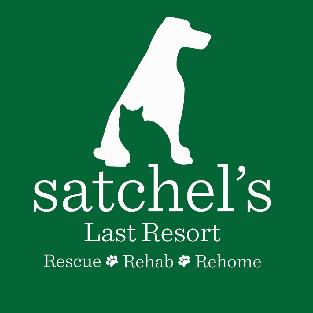 Satchel's New Logo Green (1024x1024).jpg