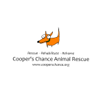 square logo transparent.png