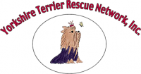 Yorkshire Terrier Rescue Network, Inc..png