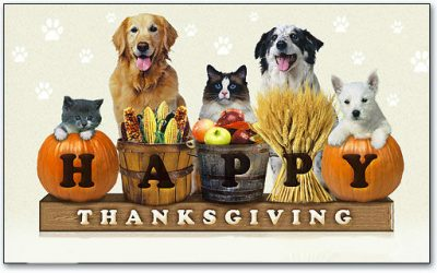 "16,000 lbs ""Puppy Food Give Away"" this Thanksgiving Week!"