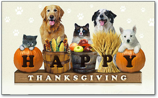 """16,000 lbs """"Puppy Food Give Away"""" this Thanksgiving Week!"""
