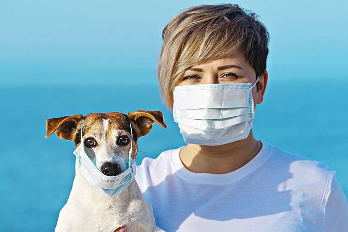 CoronaVirus [COVID-19 & Our Dogs & Cats]:  Can Our Pets Get &/Or Transmit the CoronaVirus to Us?